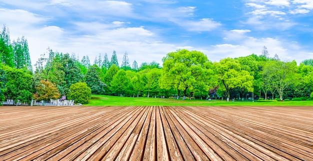 Reflet bois sol pelouse produits naturels campagne Photo gratuit