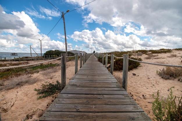 Rivage dunes de sable Photo Premium