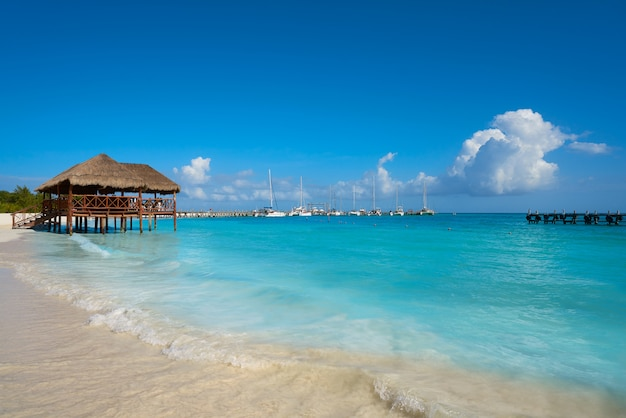 Riviera maya maroma caraïbes plage mexique Photo Premium