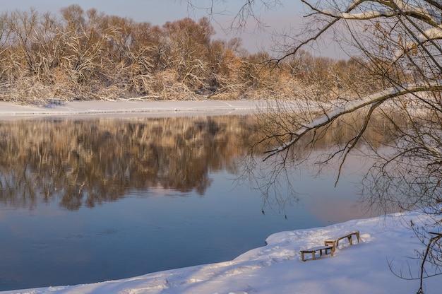 Rivière et arbres Photo Premium