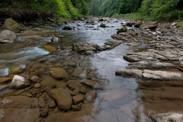 La Rivière De Montagne Coule à Travers La Forêt. Beau Paysage Des Carpates Aux Eaux Cristallines Dans Une Rivière De Montagne. Photo Premium