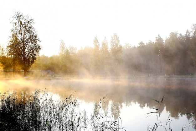 Rivière Sur Paysage Nature Photo gratuit