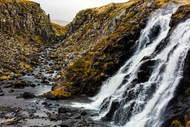 Rivière sauvage Photo gratuit