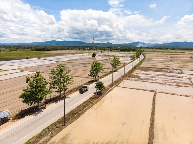 Rizière inondée pour plant de riz Photo Premium