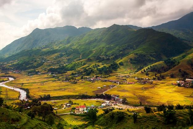 Rizières vertes en terrasses à muchangchai Photo Premium