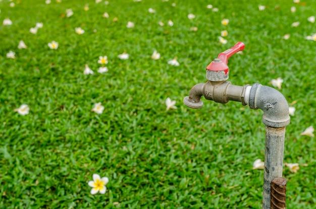Robinet dans le jardin Photo Premium