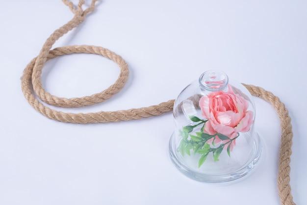 Rose Dans Une Tasse En Verre Avec Une Corde Sur Une Surface Blanche. Photo gratuit