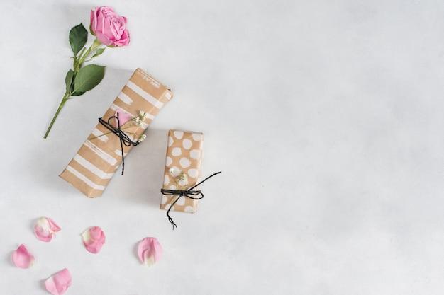 Rose fraîche près des cadeaux et des pétales Photo gratuit