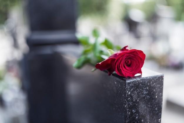 Rose sur pierre tombale. Photo Premium