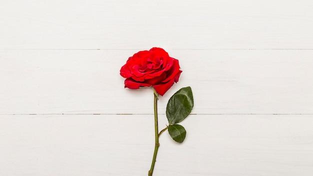 Rose rouge sur un fond en bois blanc Photo gratuit