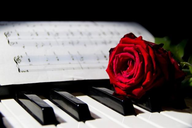 Une rose rouge sur les touches du piano Photo Premium