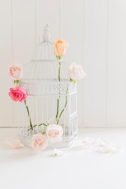 Roses colorées décoratives dans une cage Photo gratuit