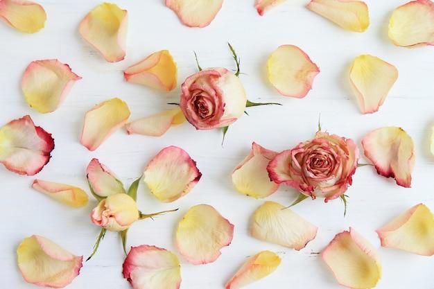 Roses roses, pétales de roses sur fond en bois Photo Premium