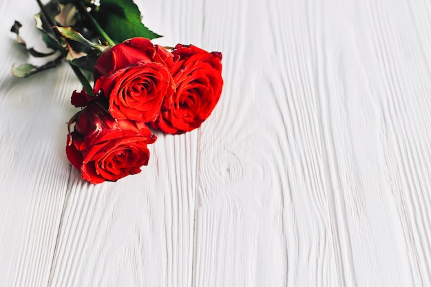 Roses rouges sur fond blanc Photo gratuit