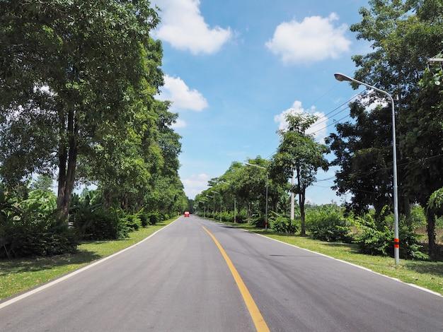 Route asphaltée avec des arbres verts à côté Photo Premium