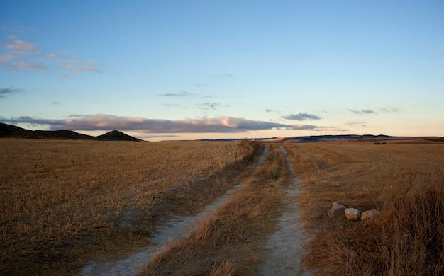 Route dans la campagne espagnole Photo Premium
