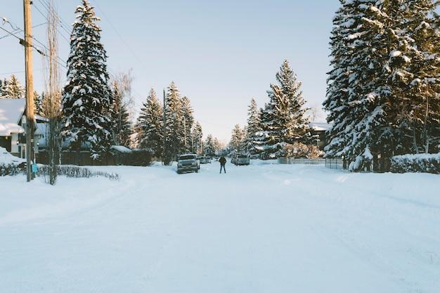 Route enneigée du village en hiver Photo gratuit