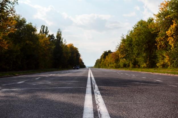 Route entourée de nature Photo gratuit