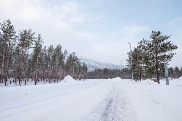 Route goudronnée recouverte de neige avec arbre sur le côté Photo Premium