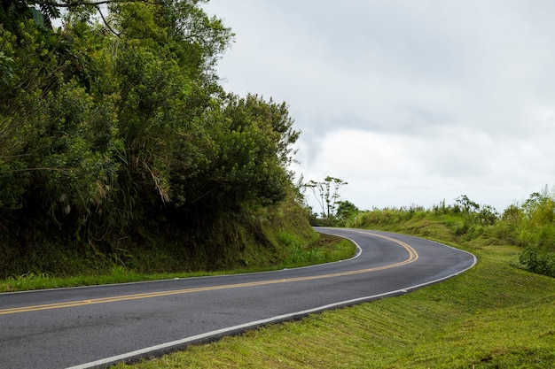 Route De Montagne Vide Près De La Forêt Tropicale Photo gratuit