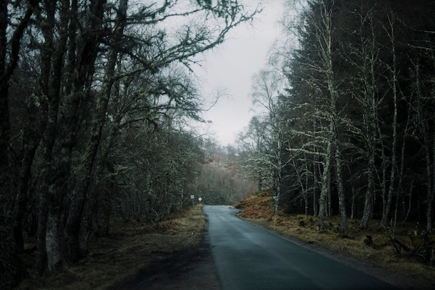 Route en place d'hiver Photo gratuit