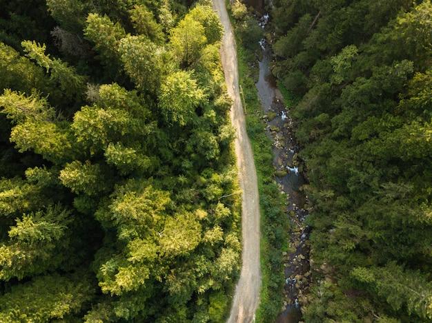 Route à travers montagnes et forêts capturées d'en haut Photo Premium