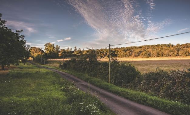 Route vide en france Photo Premium