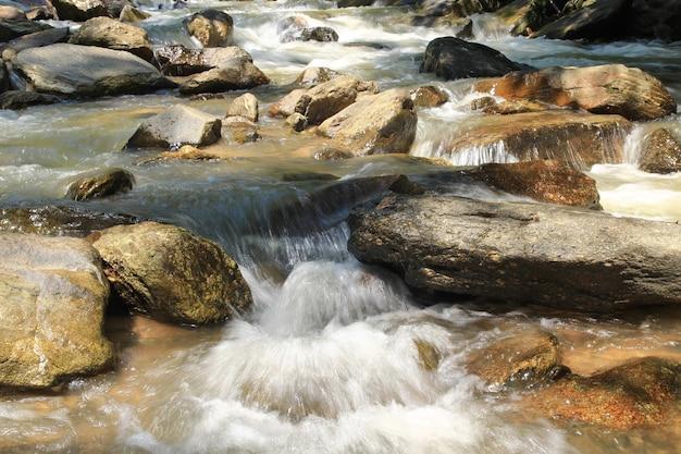 Ruisseau avec pierre Photo Premium