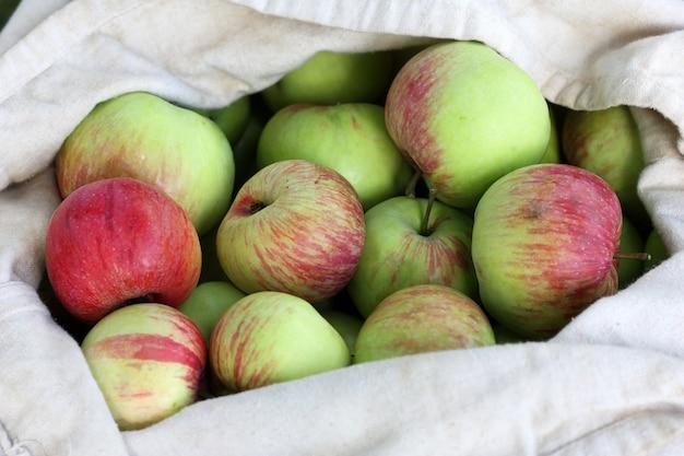 Sac de pommes rouge-vert en été Photo Premium