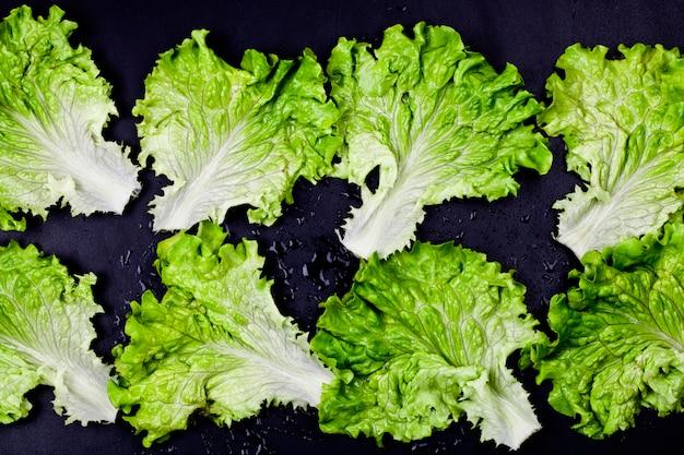 Salade de laitue bio verte feuilles sur fond noir humide. Photo Premium