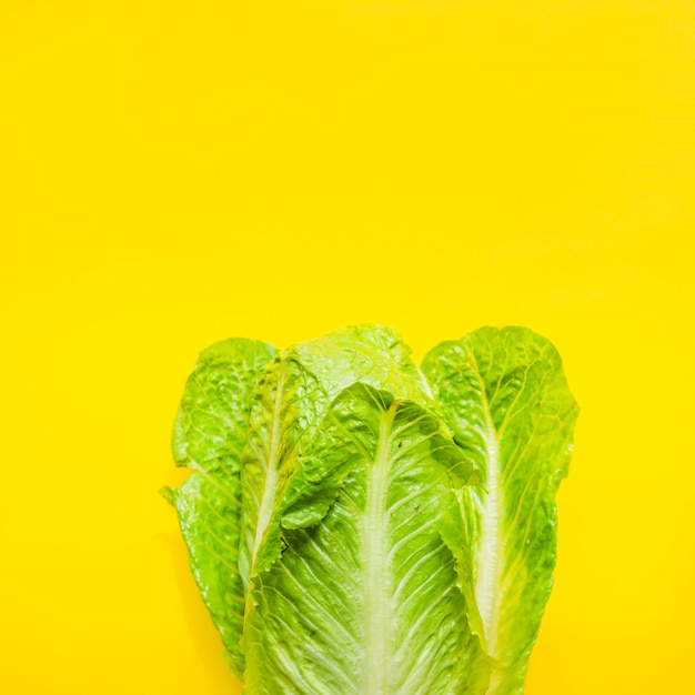 Salade Photo gratuit