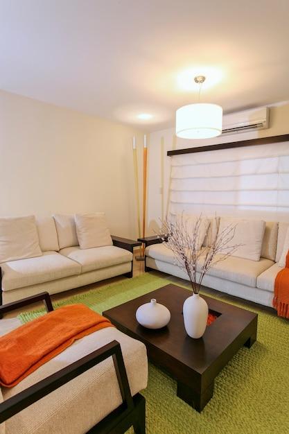 Salon Moderne Avec Décoration Verte Et Orange, Maison Et Décoration. Photo Premium