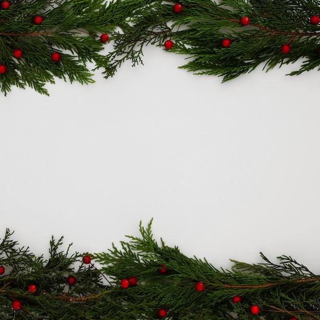 Sapin de noël feuilles sur fond blanc avec espace de copie Photo gratuit