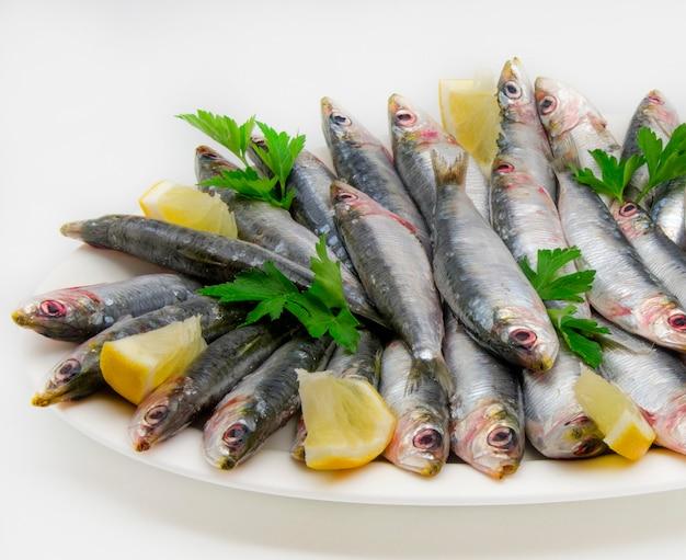 Sardines fraîches Photo Premium