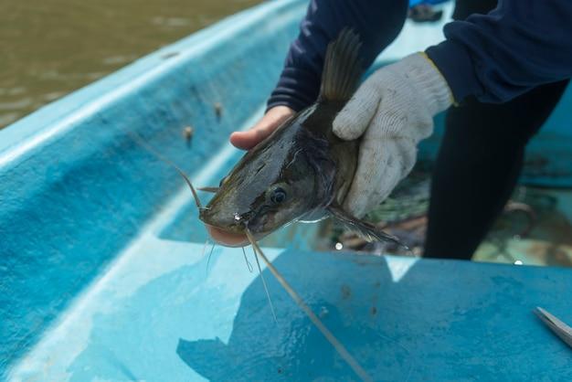 Les sauveteurs pêchent dans le filet Photo Premium
