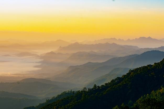 Scène du matin, image brumeuse d'été de beauté, vue attrayante sur le brouillard recouvert de vallée sur fond de lumière dorée, paysage de montagnes fantastiques Photo Premium
