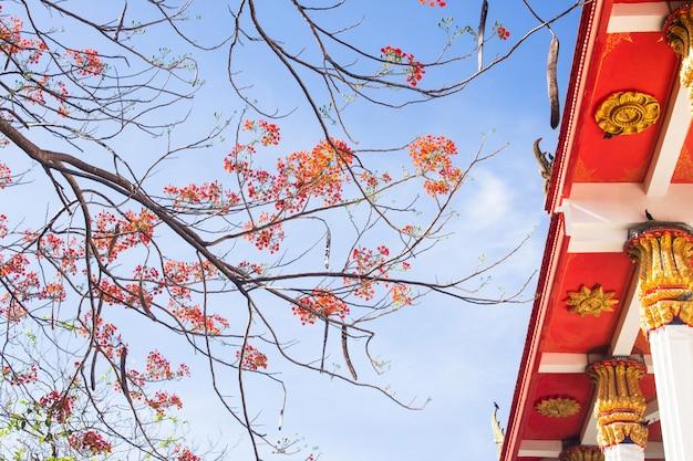Scène de voyage bouddhisme temple en thaïlande Photo Premium