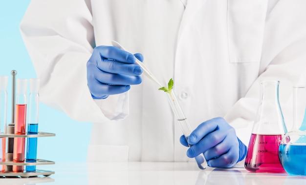 Sciences Végétales En Laboratoire Photo gratuit
