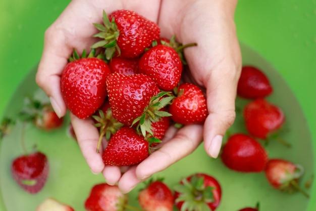 Se laver les mains à la fraise pour manger dans un moment de détente Photo Premium