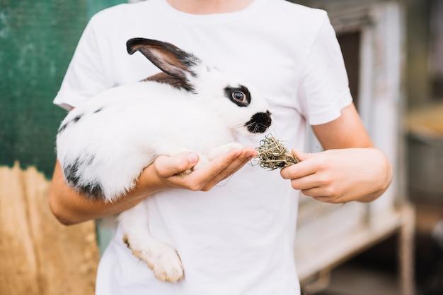 Section médiane d'un garçon nourrissant l'herbe d'un lapin à la main Photo gratuit