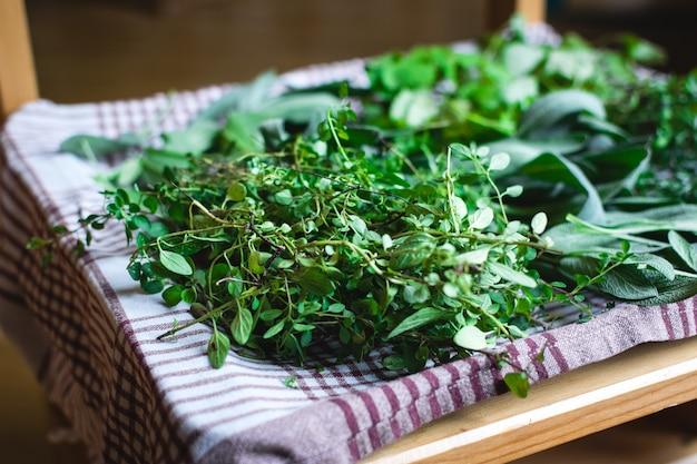 Sélection d'herbes récoltées à la maison Photo gratuit