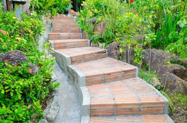 Sentier dans le parc Photo Premium