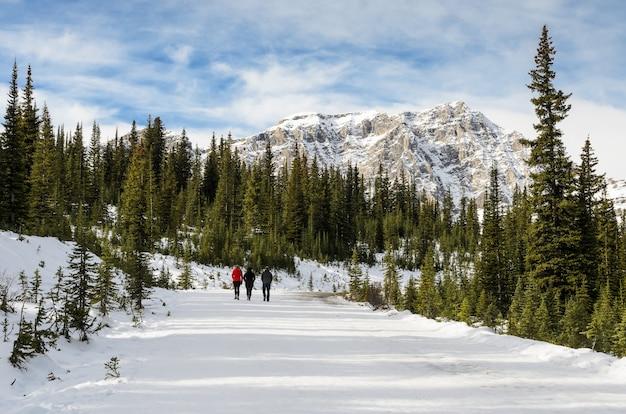 Sentier panoramique du lac peyto au parc national banff en alberta, canada Photo Premium