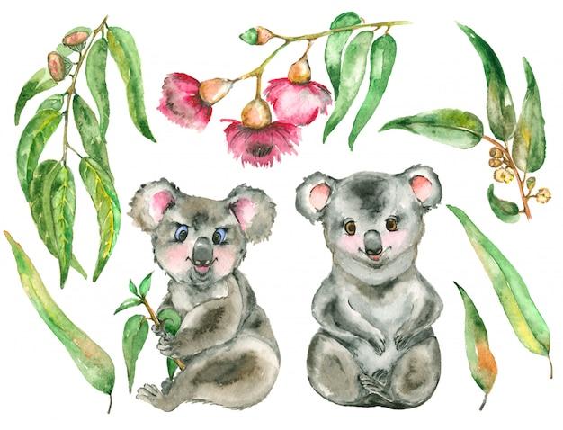 Set Koala Aquarelle Photo Premium
