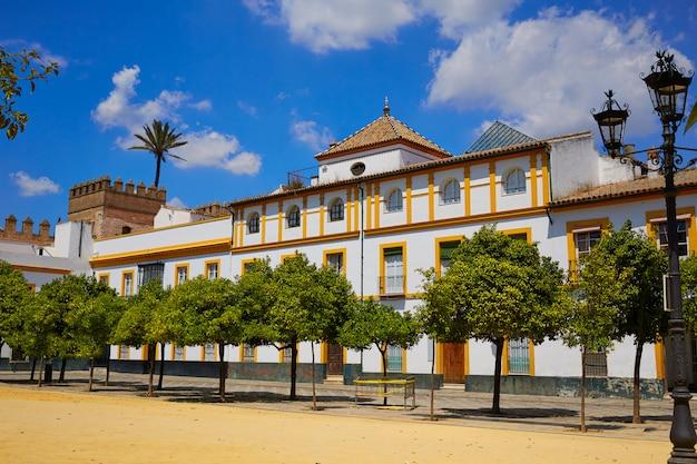 Séville real alcazar de séville patio de banderas Photo Premium