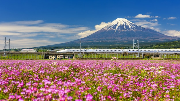 Shinkansen ou train à grande vitesse chez fujisan Photo Premium