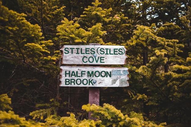 Signalisation En Bois Vert Et Blanc Photo gratuit
