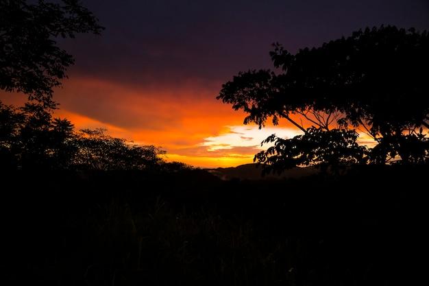 Silhouette d'arbres et de montagne pendant le coucher du soleil dans la forêt tropicale Photo gratuit