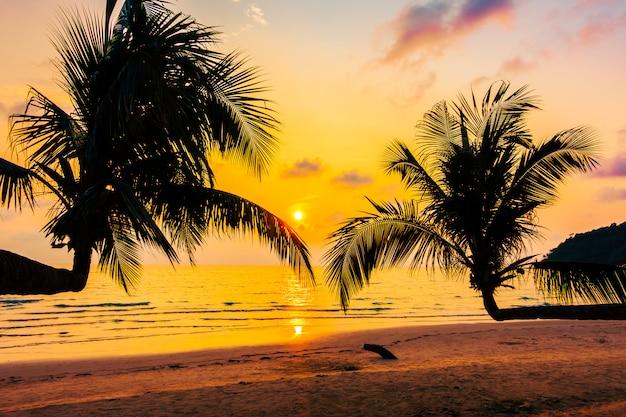 Silhouette cocotier Photo gratuit