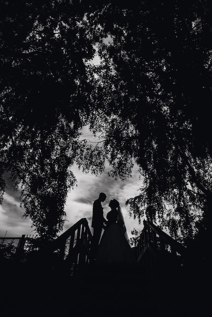 Silhouette du couple mariée et le marié le jour du mariage Photo Premium